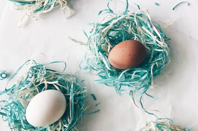 DIY Baby Birds Nest from Easter Basket Shavings