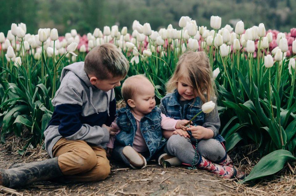 Abbotsford Tulip Festival   Family Photography