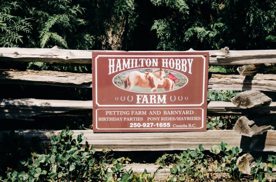 Things to do near Parksville | Hamilton Hobby Farm