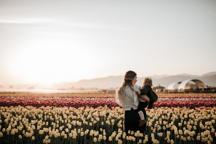 Things to Know Before Going to the Abbotsford Tulip Festival
