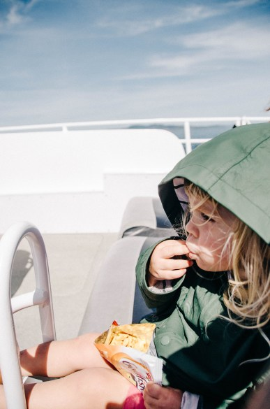 Eagle Wings Whale and Wildlife Tour | 10 Things to do in Victoira BC