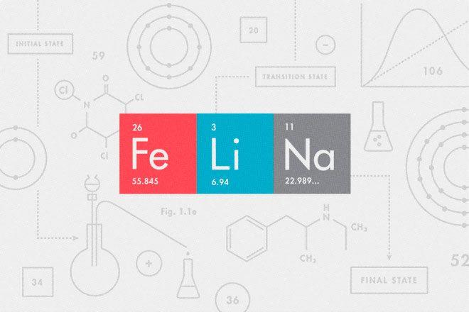 felina-660x440