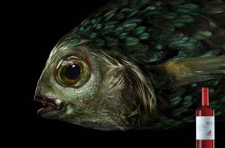 fish_2400