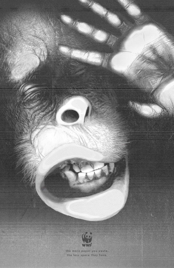 wwf-tiger-elephant-orangutan-print-378810-adeevee-664x1024