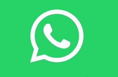 whatsapp perfiles verificados