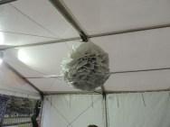 big white tissue pompom