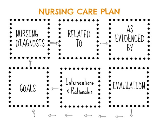 Care Plan Visual