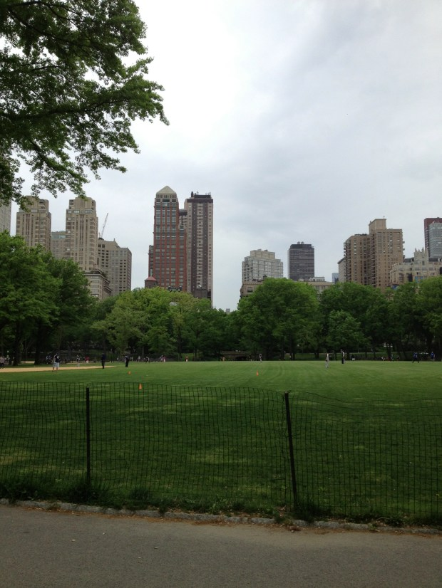 Central Park. Such a peaceful retreat in a city stuck in fast forward mode!