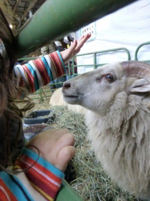 Making friends at a New England Wool Show