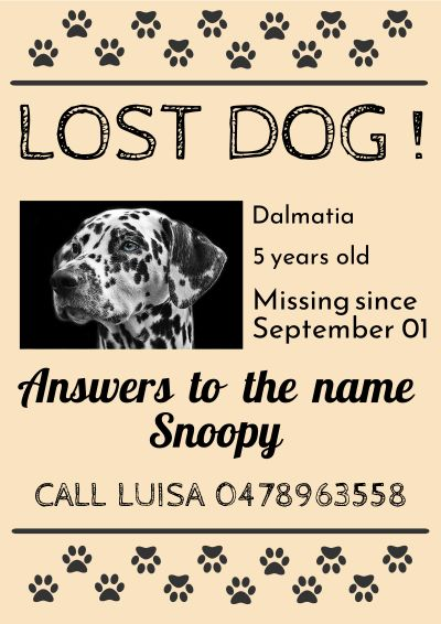 lost dog animals poster template