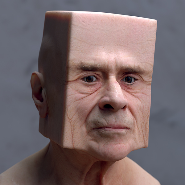 distorted 3d scanned faces