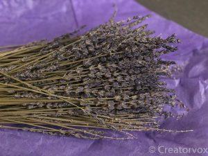 lavender sachets blossoms on the stalks