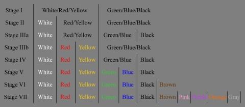 color evolution in color