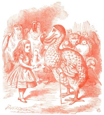 dodo bird x