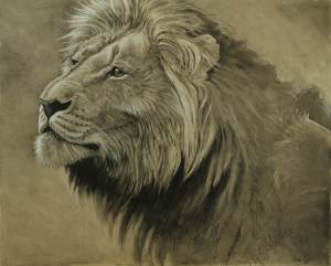 Lion Charcoal Aaron Blaise Animal Art