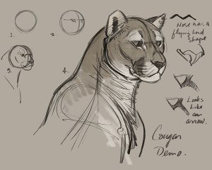drawing draw cats cat animal sketches animals drawings cougar aaron dessin course construction creatureartteacher blaise animaux sketch cougars puma lion