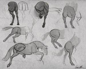 how to draw horses legs