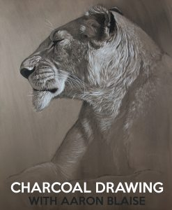 charcoal-drawing-lioness-title