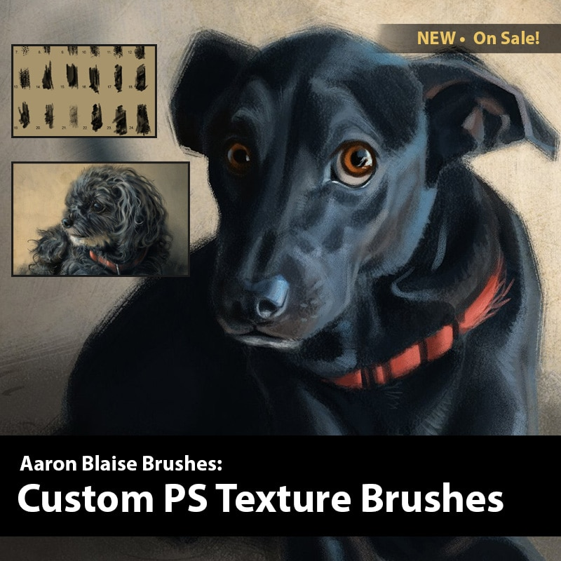 Aaron Blaise Custom PS Texture Brushes 2019