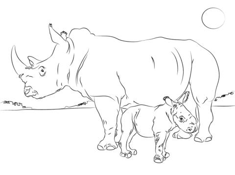 Black rhino and calf coloring page