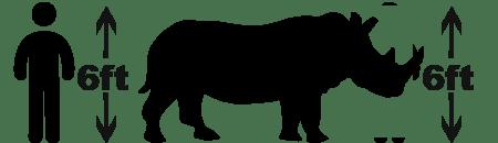 Black rhino size comparison Black Rhino facts