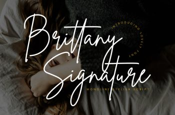 Brittany Preview 01 350x230