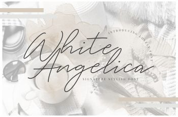 White Angelica Preview 01 350x230