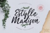 Last preview image of Estylle Madison Calligraphy