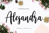 Last preview image of Alesandra Modern Calligraphy
