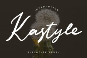 Kastyle Signature Brush