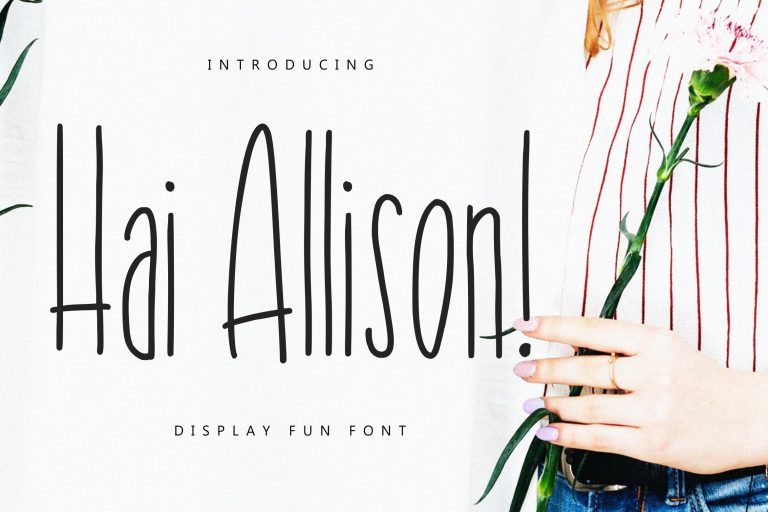 Preview image of Hai Allison Fun Display