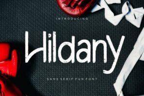 Hildany Sans Fun