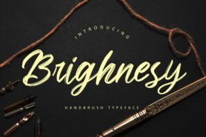 Brighnesy Hand Brush