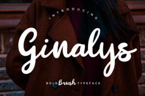 Ginalys Bold Brush