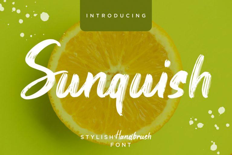 Preview image of Sunquish Stylish Handbrush