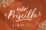 Last preview image of Priscilla Fancy Brush Typeface