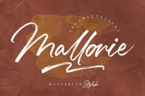 Mallorie Handbrush Stylish