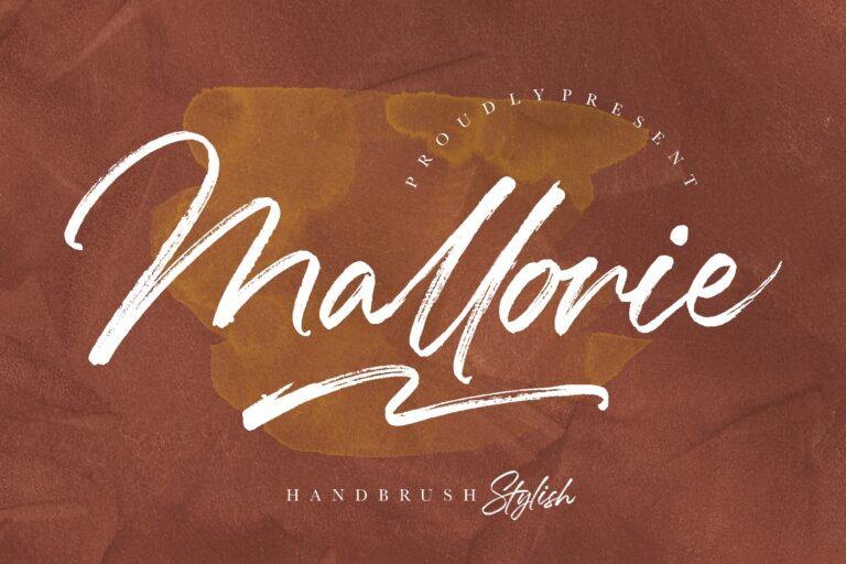 Preview image of Mallorie Handbrush Stylish