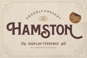 Hamston Display Vintage