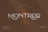 Last preview image of Montrelo Elegant Sans Serif