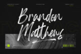 Last preview image of Brandon Matthews Handbrush Script