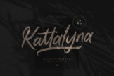 Last preview image of Kattalyna Brush Signature