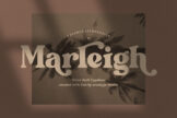 Last preview image of Marleigh Retro Serif