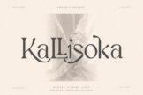 Last preview image of Kallisoka Modern Elegant Serif