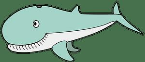 Cartoon whale clipart Free download transparent PNG Creazilla