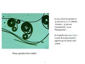 D Diapositive04