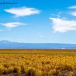 San Pedro de Atacama, un mundo detrás de cada pequeña puerta!!!