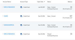 Credit Report Showing New Accounts