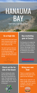 Tips for Visiting Hanauma Bay Infographic