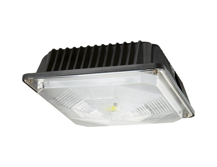 Led Light Bulbs Cree
